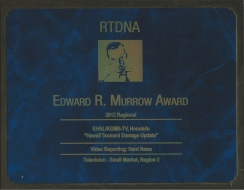 <h5>Edward Murrow Award</h5><p>Regional Winner</p>