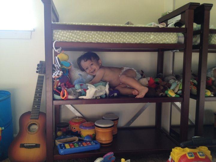 shelf-climbing